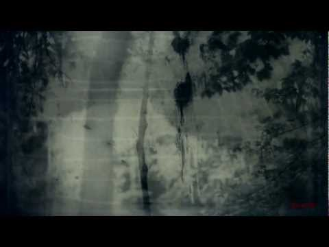 Download BURZUM - Dunkelheit HD (Unofficial Music Video)