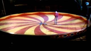 Worlds Smallest Circus Elaphant