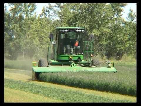 Quequen sa Producción de cebolla y alfalfa Valle de Viedma