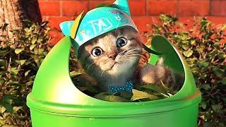 Little Kitten My Favorite Cat - Kitten Preschool Game - Play Fun Learning Games for Preschool
