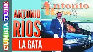 Antonio Ríos - La Gata | Disco Completo
