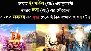nasirullah chadpuri waz  ||  হযরত ইসমাইল (আ:) এর কুরবানী, হযরত ইসা (আ:) এর মৌজেজা, বাদশাহ্ জমজম