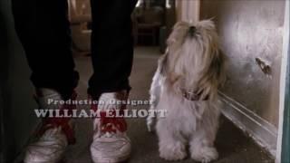 Ace Ventura: Pet Detective - Dog-heist