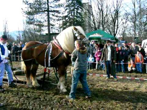 Formanské závody areál Vojtěchov 2010 Těžk� tah 750kg Marian Lord