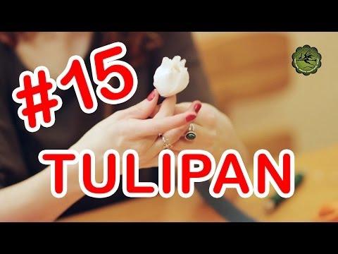 Kwiatki z bibuły 15 tulipan
