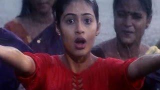 Naaga Movie Video Songs || Megham Karigenu Video Song || Jr.NTR , Sada