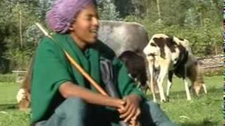 Ethiopian Gojam Agwe new song_Shemlalelale[HD]