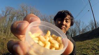Panfishing with Mummified Wax Worms?! (Haddonfield, NJ)