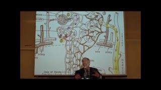 PHARMACOKINETICS; Metabolism & Excretion by Professor Fink