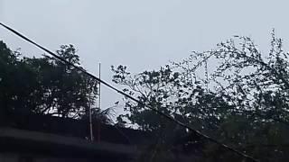 ঘূর্নিঝড় রোয়ানুর ভয়াবহ দৃর্শ্য