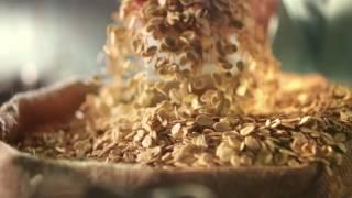 شوربة الشوفان من ماجي: الطعم على أصوله