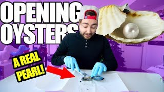 I BOUGHT A BAG OF OYSTERS OFF EBAY!! | PEARL HUNTING