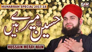 New Muharram Kalam 2017 | Hussain Meray hain | Hafiz Ahmed Raza Qadri | Released by ARQ Records