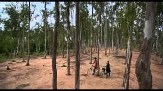 Basanto Utsav Trailor