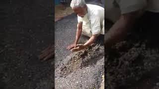 সোনাচাকা বাজার নোয়াখালী 2019 বাজেট