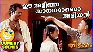 ഈ അളിഞ്ഞ സാധനതിനെയാണോ അളിയൻ എന്ന് വിളിക്കുന്നത് | Thilakkam Comedy Scenes | Malayalam Comedy [HD]