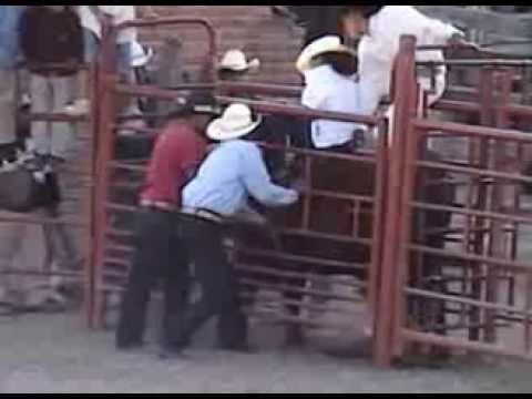 bonita mujer montando un toro Una Reyna Jineteando EL DURANGO