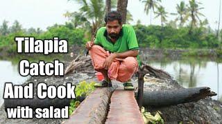 തിലോപ്പി പിടുത്തവും തിലോപ്പി ഫ്രൈയും ഒരു കിടിലൻ സലാഡും   Tilapia Catch And Cook   Kerala Fishing
