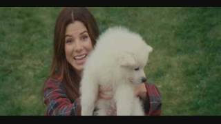 The Proposal - Scene with Kevin the Dog