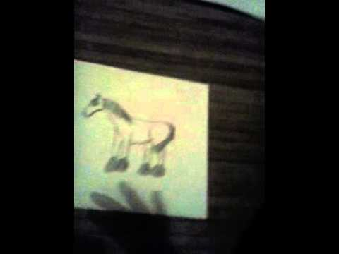moje rysunki koni i koni schleich