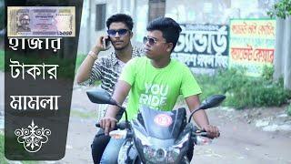টাকা দে নয়তো প্রান দে | Funny Story | 4k Video | Team Stupids