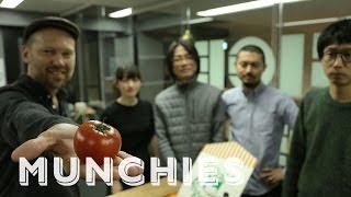 Food Hacking: Talking Tomatoes