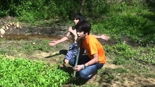kungfu asian farmer