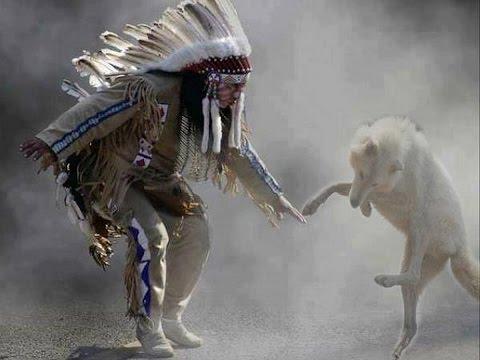 dances with wolves versus a man