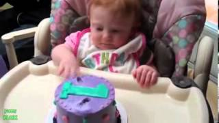 Best Baby 39 s First Cake Compilation 2013  HD