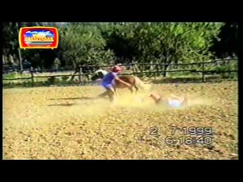 Vídeo Cassetadas do Faustão 27 02 2011