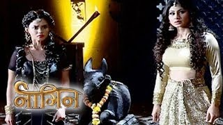 Naagin 12th Feb 2016 | Shesha & Shivanya ATTEMPT To Get NAAGMANI