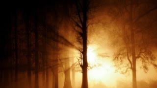 Ke Se Acin Elo - Prabhat Sangeet #4906