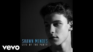 Shawn Mendes - Life Of The Party (Audio)
