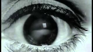 Suzanne Vega Feat. DNA - Tom_#39;s Diner HQ.flv