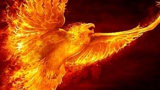 L'Aquila Liberata nel Sole di Swami Roberto 30 marzo 2014