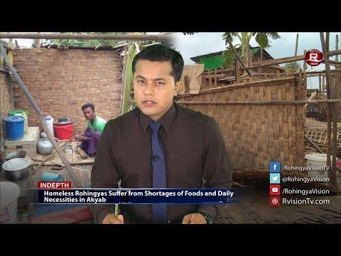 Rohingya Daily News 16 May 2017