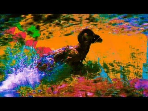Xxx Mp4 Dan Deacon USA Adult Swim Singles 2013 3gp Sex