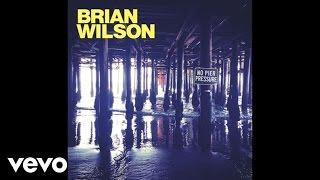 Brian Wilson - This Beautiful Day (Audio)