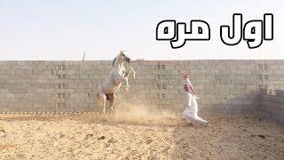 سعودي اول مرة يركب خيل !!!