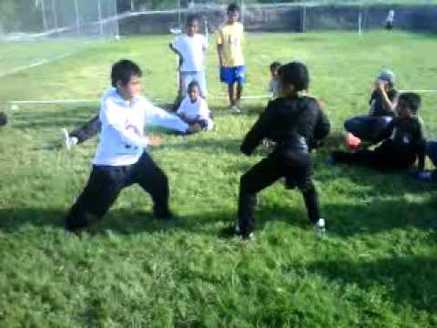 escuela de kung fu honduras algunas peleas de niños