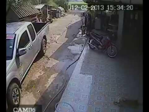 คลิปวิญญาณสุนัข จากกล้องวงจรปิด