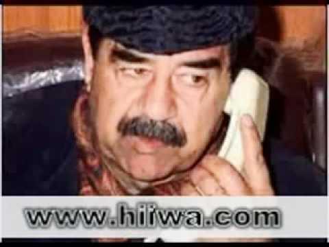 komedi kurdi sagvangulli85
