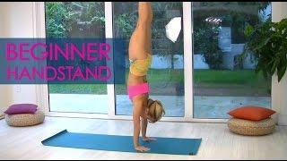 Beginner Yoga Handstands with Kino