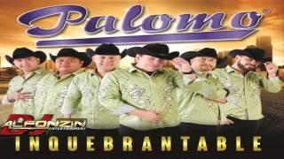 Palomo - Por Experiencia | 2015