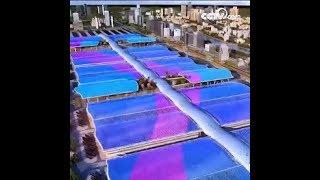 أكبر مبنى منفرد في العالم|CCTV Arabic