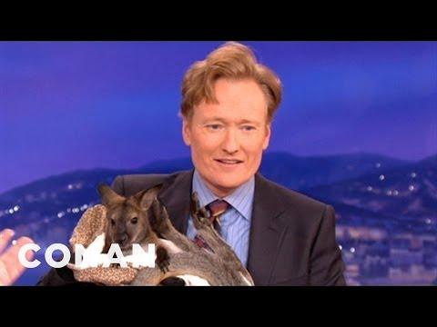 Animal Expert David Mizejewski Wallaby & Caracal CONAN on TBS