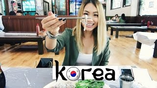 Travel Vlog: Seoul, South Korea | HAUSOFCOLOR