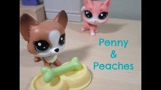 LPS: Penny & Peaches Skit || Sugar Diamond
