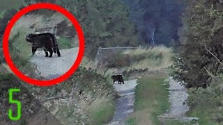 5 Mysterious Photos that Solved Forgotten Mysteries