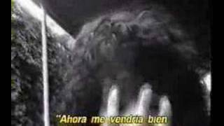 Bedhead è un cortometraggio  diretto da Robert Rodriguez